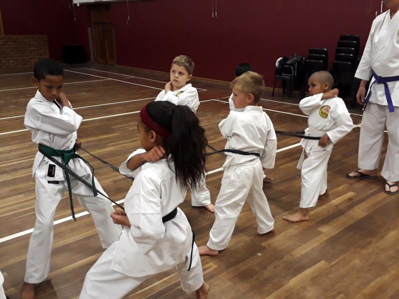 Kiryoku Dojo- Traditional Karate Classes for kids