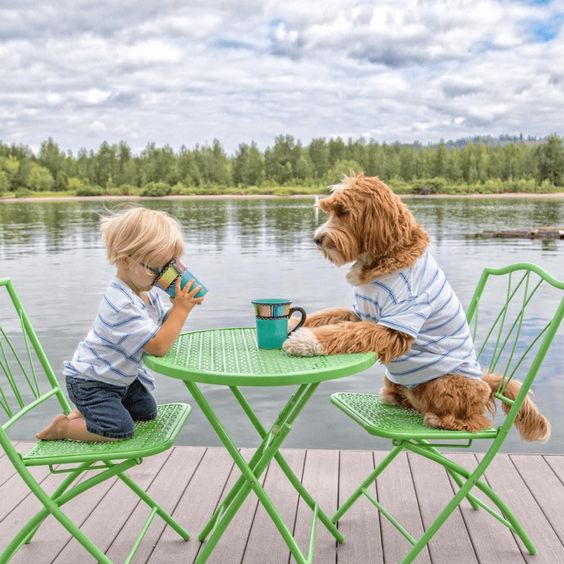Reasons Why You Should Get a Dog for Your Kids