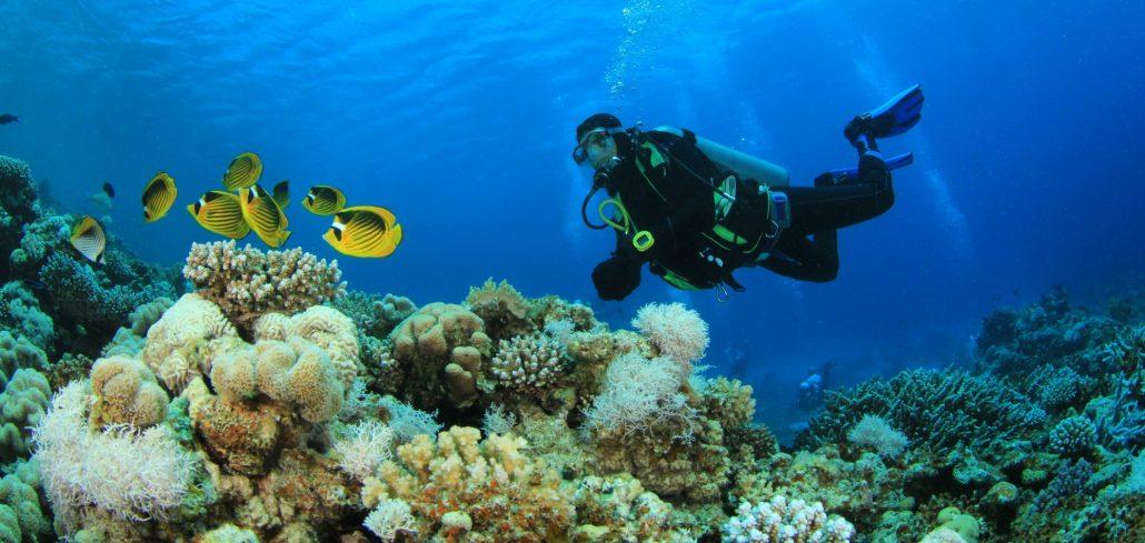 Scubaco Diving & Travel, Umkomaas, KwaZulu-Natal